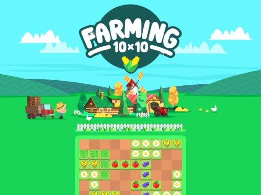 10x10 Farming