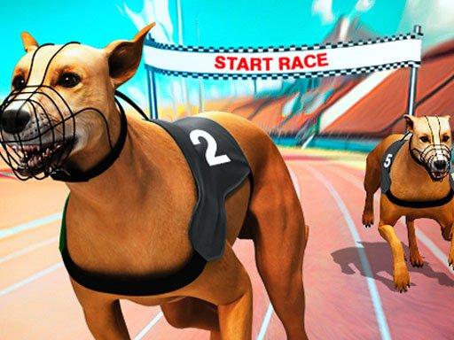 Crazy Dog Racing Fever