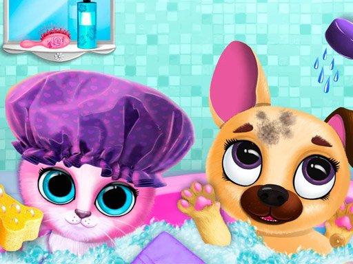 Cute Pet Friends