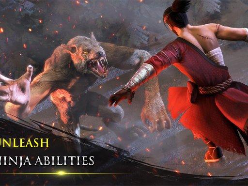Takashi Ninja Warrior